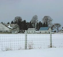 White Farm on a Gray Day by Gene Walls