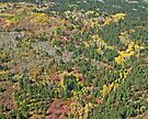 Aerial of Autumn, Utah, USA by Margaret  Hyde