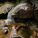 McCarrs Creek by vilaro Images