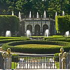 Garden Symmetry by cclaude