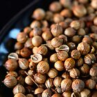 Coriander Seed by SmoothBreeze7