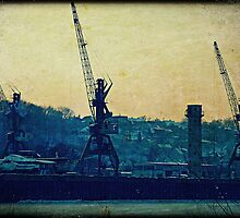 Three Cranes by Errne