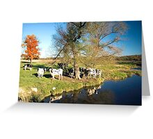 Gathering at the Scratchin' Tree Greeting Card