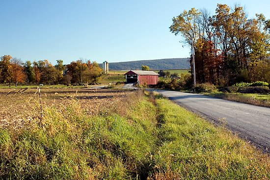 Hayes Covered Bridge Connects The Union County Farms by Gene Walls