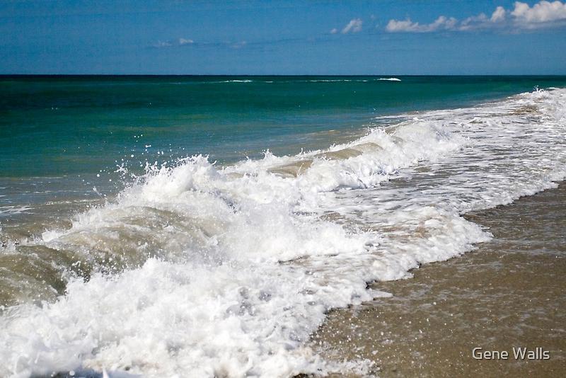 Emerald Isle Sun, Sand, Surf & Sky by Gene Walls