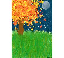Autumn Moon Photographic Print