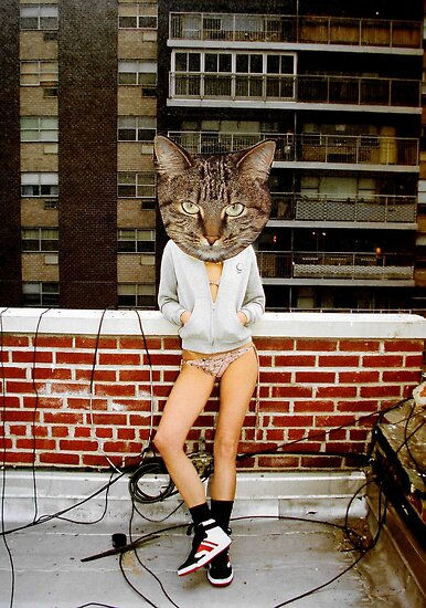 the cat by Loui  Jover