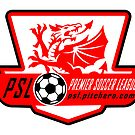 Premier Soccer Leagues Badge by Gavin Shields