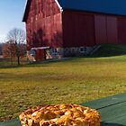 Homemade Apple Pie on a wooden picnic table by DeborahKolb