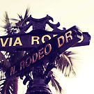 Rodeo Drive  by Jason Forster