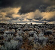 Always A Place In My Heart by Charles & Patricia   Harkins ~ Picture Oregon