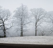 Blue Ridge Parkway Winter by RayDevlin