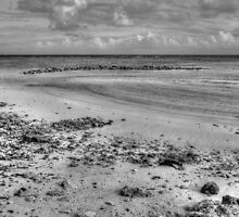 Yamacraw Beach in Nassau, The Bahamas (Black & White) by 242Digital