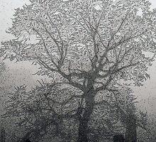 Meditating tree by Errne