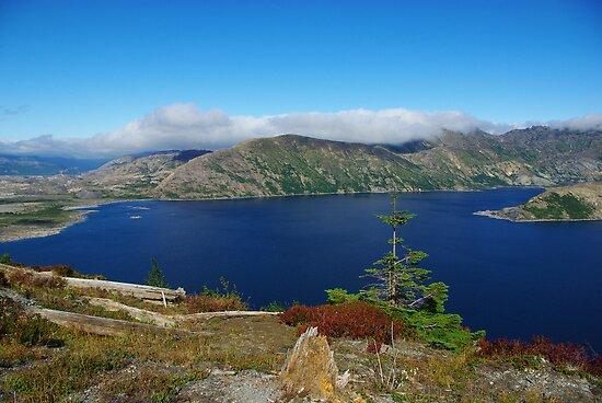 Spirit Lake, Washington by Claudio Del Luongo