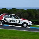 Chiomi Gendre - Holden Torana A9X - Group G by Steven Weeks