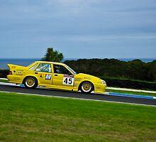 Adrian Allisey, ex-Smerdon/Hinton/Turpin 719 Holden Commodore VL by Steven Weeks