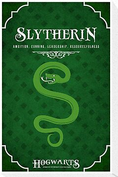 Slytherin House Poster by liquidsouldes