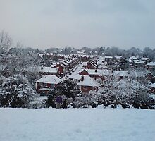 Caversham Christmas by lwatmore