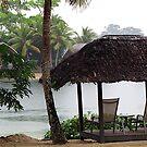 Vanuatu Rain by Marcia Luly