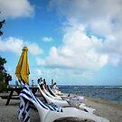 Vanuatu Beach by Marcia Luly