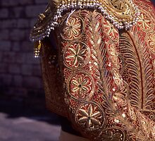 Matador Jacket-Gold by Tamarra