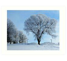 Winter Frosting Art Print