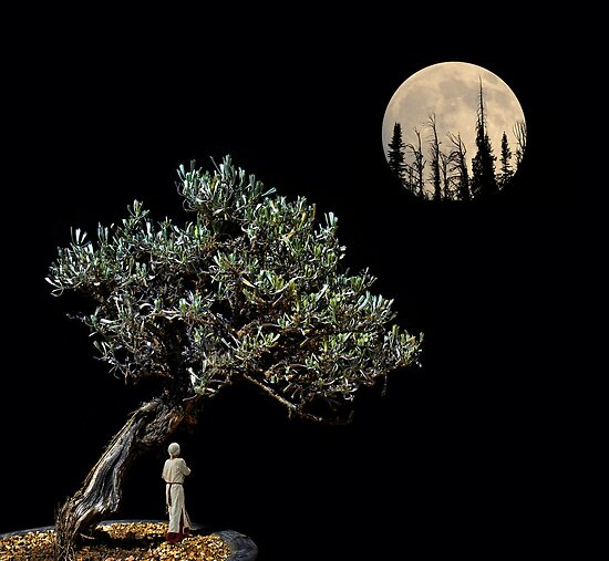 2653 by peter holme III