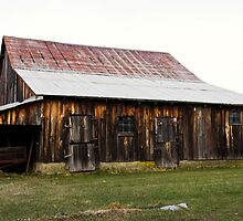 Weathered Timber by Tom Gotzy
