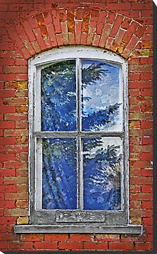 Through a window past by Jim Cumming