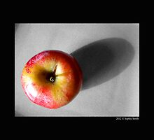 Malus Domestica - Washington State Honeycrisp Apple by © Sophie W. Smith