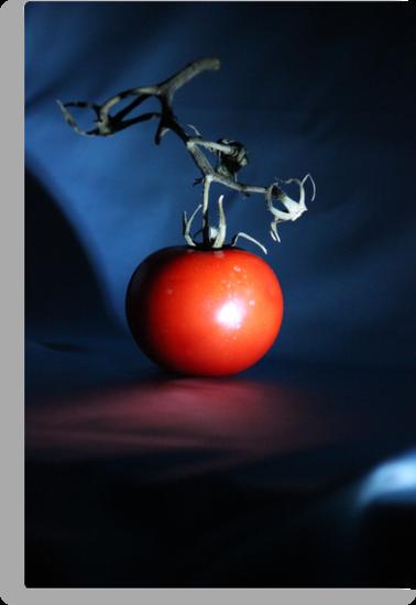 Disco Tomato by Bob Hardy