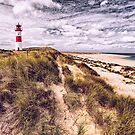 Frisian Beauty (Sylt) by Dirk Wiemer