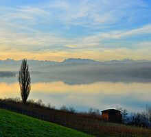 Lake at Dawn by Daidalos