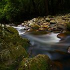 Down river by Liam Robinson