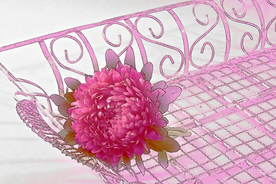 Aster In Tray - Digital Artwork by Sandra Foster