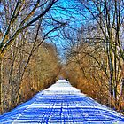 Snowmobile Tracks by EBArt
