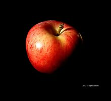 Malus Domestica - Washington State Honeycrisp Apple by © Sophie Smith