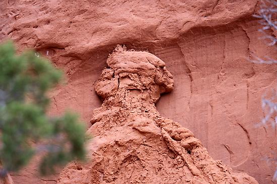Indian Profile,Kodachrome State Park,Utah,USA by Anthony & Nancy  Leake