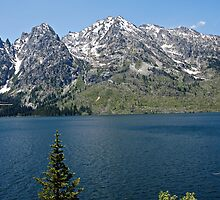 Grand Teton Jenny Lake by Michael Kirsh