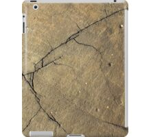 Cracked Rock Face Texture iPad Case/Skin