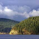 Good Morning Galiano Island  by TerrillWelch