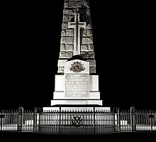 Kings Park War Memorial by yewkwang