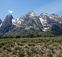 Grand Teton Mountain Row by Michael Kirsh