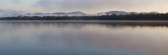 Myall Lake Morning ,NSW by Virginia McGowan