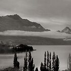 A Wakatipu Delight by Larry Davis