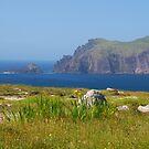 Dingle Coast by mcstory