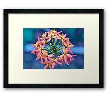 Floral Crown Framed Print