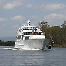 Waves of Wealth Coming Down The River by aussiebushstick