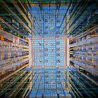 Looking Up by Michael Sanders